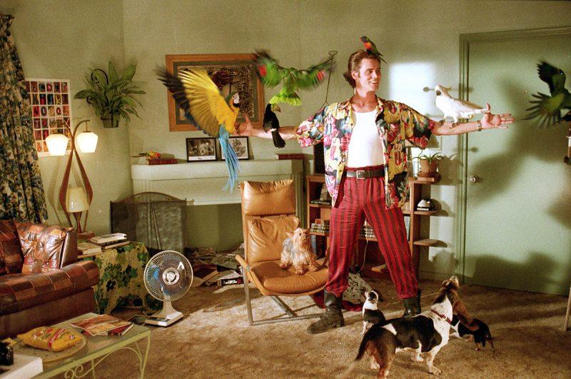 VIP Comedy, Ace Ventura